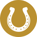 Icon Horseshoe@2x E1597351921405