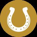 Icon Horseshoe@2x E1597351921405