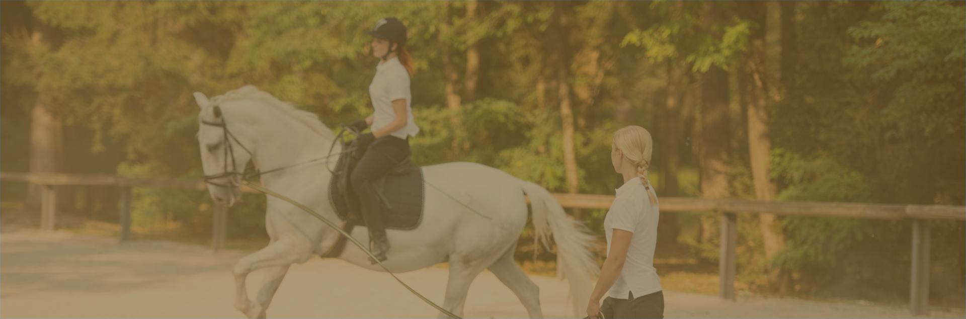 Interscholastic Equestrian Association (IEA) Teams