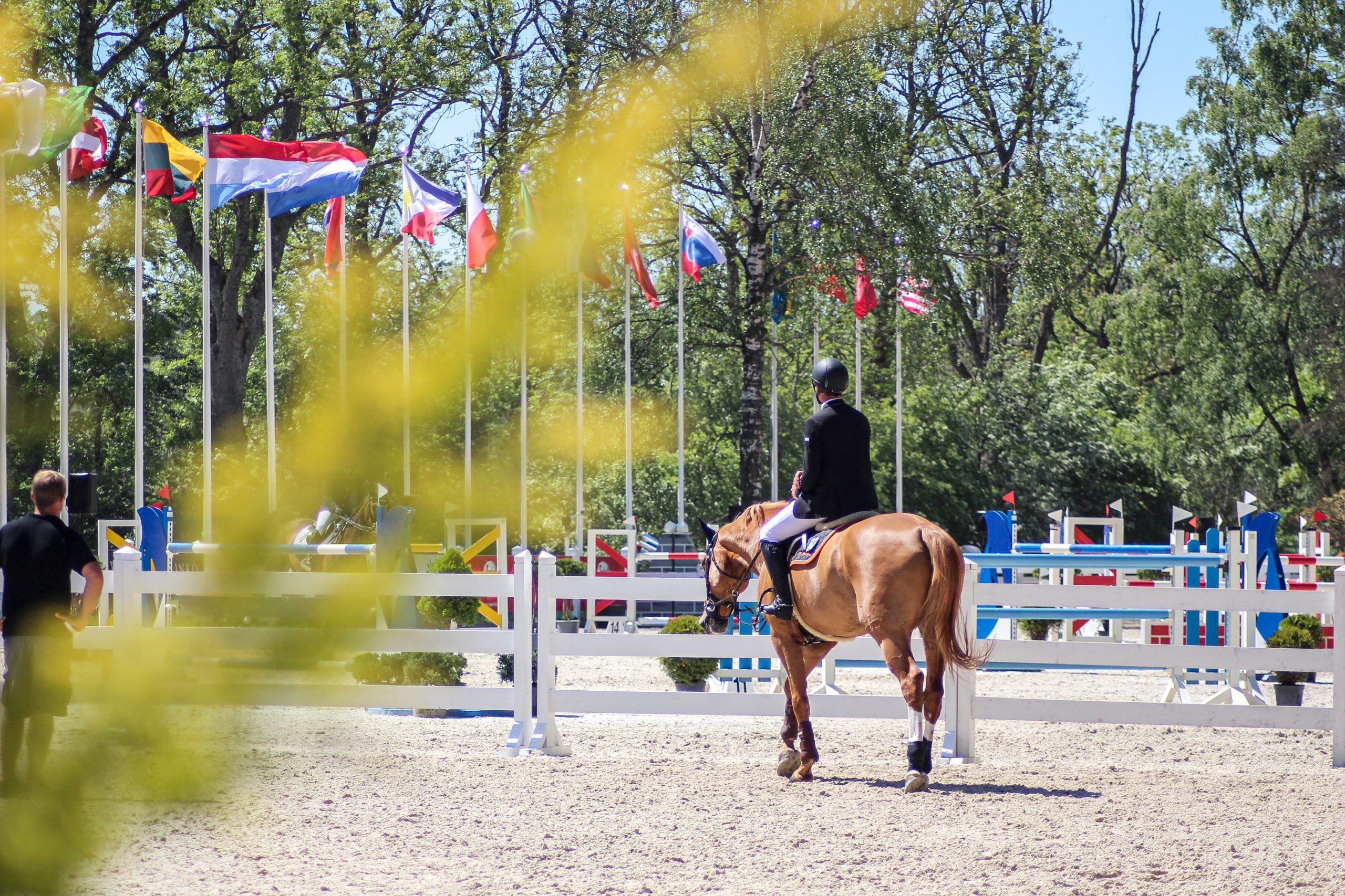 A History of Equestrian Olympic Competition